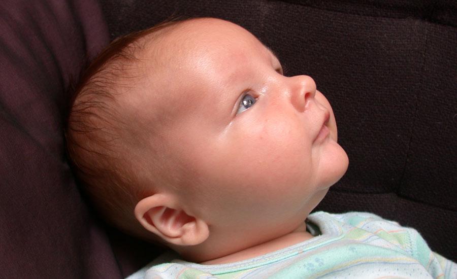 A los bebes desarrollo meses los de 3